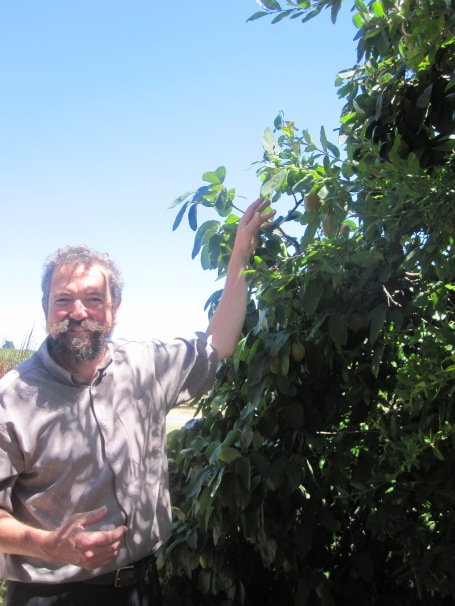 The fantastic John Baldwin of Barossa Daimler Tours, next to a quince tree